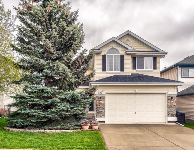 529 Rocky Ridge Bay NW, Calgary, AB T3G 4E7 (#C4245580) :: Redline Real Estate Group Inc