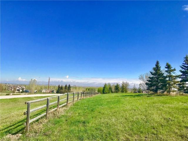 286047 50 Street E, Rural Foothills County, AB T0L 0X0 (#C4245703) :: The Cliff Stevenson Group