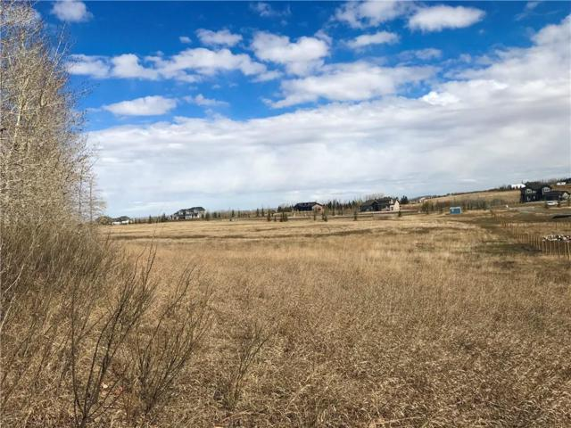 286035 50 Street E, Rural Foothills County, AB T0L 0X0 (#C4245707) :: The Cliff Stevenson Group