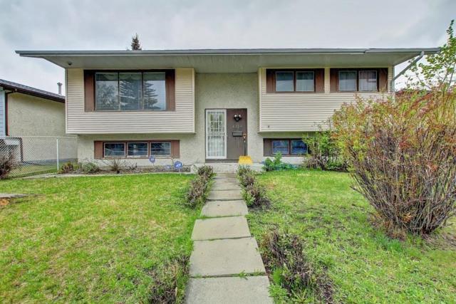 6278 Penedo Way SE, Calgary, AB T2A 3N5 (#C4245711) :: Redline Real Estate Group Inc