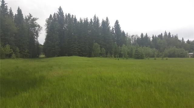 112 Township Road 325A, Rural Mountain View County, AB T0M 1X0 (#C4245817) :: The Cliff Stevenson Group