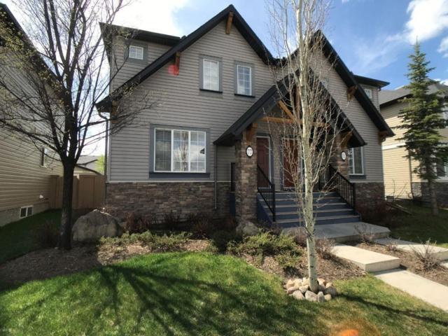 77 Skyview Springs Common NE, Calgary, AB T3N 0A6 (#C4245906) :: Redline Real Estate Group Inc