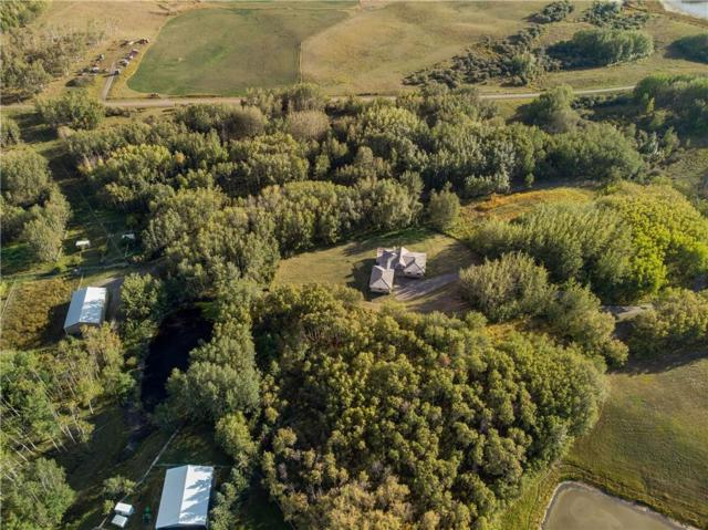 316070 111 Street W #200, Rural Foothills County, AB T1S 0V7 (#C4246051) :: Redline Real Estate Group Inc