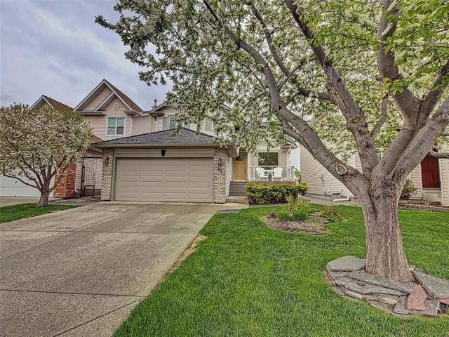 23 Riverview Circle SE, Calgary, AB T2C 4K3 (#C4246074) :: Redline Real Estate Group Inc