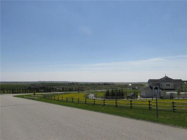 # 17 Crocus Meadows Place W, Rural Foothills County, AB T1S 1A2 (#C4247628) :: The Cliff Stevenson Group