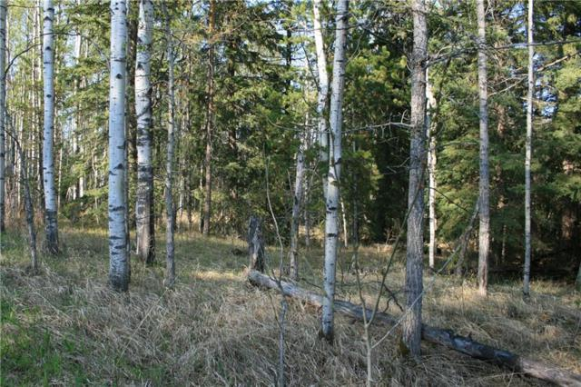Site#19 & 20, 50056 Twp 35-0, Rural Clearwater County, AB T0M 1X0 (#C4247675) :: Redline Real Estate Group Inc