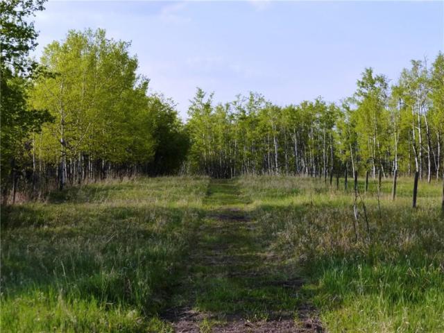 4 Acres - Red Deer Lake/Priddis, Rural Foothills County, AB T2J 2T9 (#C4247777) :: Redline Real Estate Group Inc