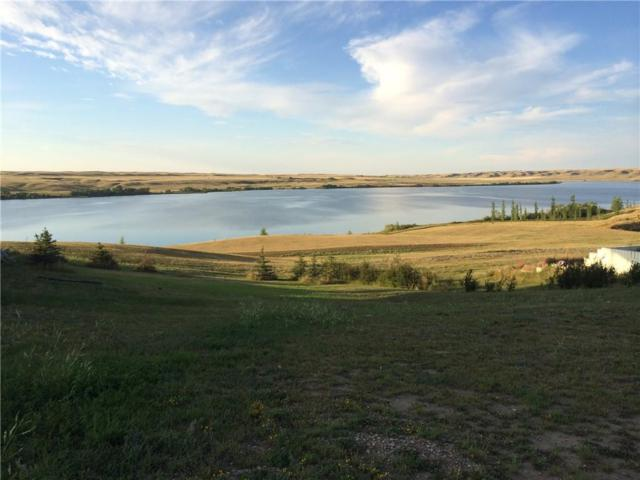 113 Vista Crescent, Rural Vulcan County, AB T0L 0R0 (#C4247948) :: Redline Real Estate Group Inc