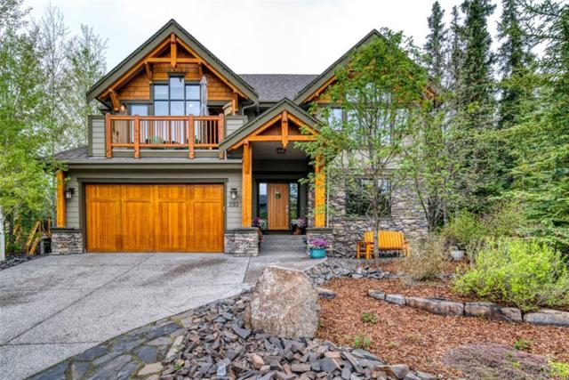 293 Miskow Close, Canmore, AB T1W 3G7 (#C4248538) :: Canmore & Banff