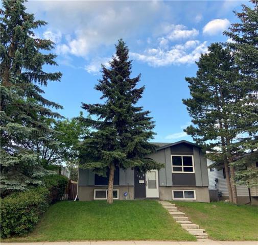 140 Falchurch Road NE, Calgary, AB T3J 1J8 (#C4248841) :: Redline Real Estate Group Inc