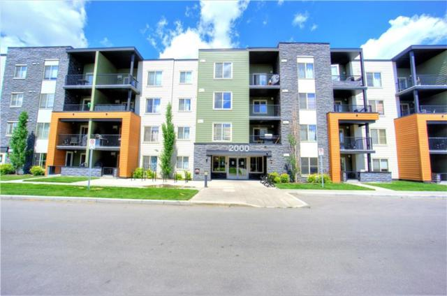 1317 27 Street SE #2203, Calgary, AB T2A 4Y5 (#C4253106) :: Redline Real Estate Group Inc