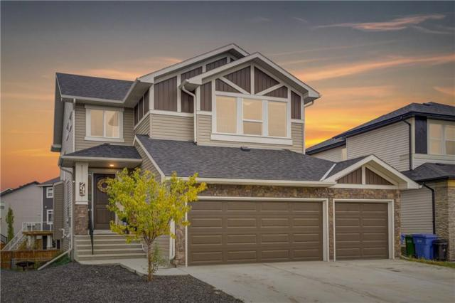 293 Rainbow Falls Way, Chestermere, AB T1X 0T1 (#C4253650) :: Redline Real Estate Group Inc