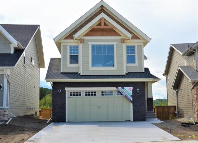 206 Riviera View, Cochrane, AB T4C 2R5 (#C4254190) :: Redline Real Estate Group Inc