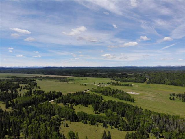 Coal Camp Road, Rural Mountain View County, AB T0M 1X0 (#C4254788) :: Redline Real Estate Group Inc