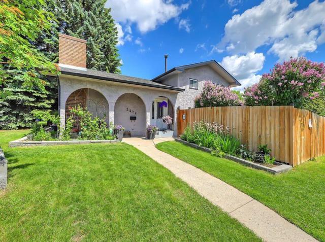 3424 56 Street NE, Calgary, AB T1Y 3N9 (#C4255053) :: Redline Real Estate Group Inc
