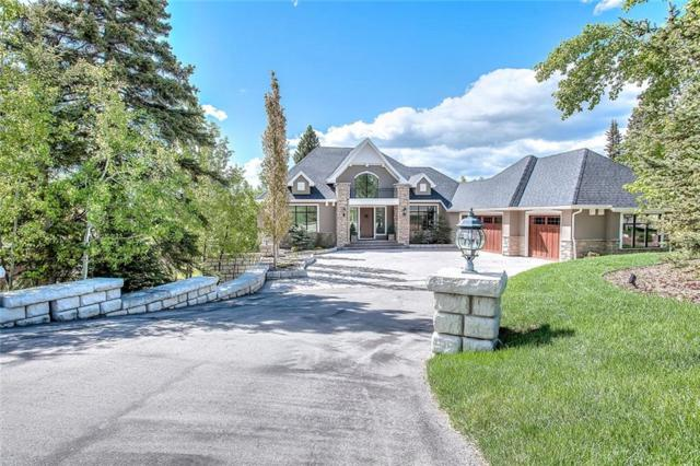 110 Hawks Landing Drive, Priddis Greens, AB T0L 1W0 (#C4255131) :: Redline Real Estate Group Inc