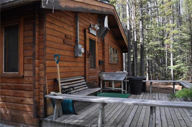 4 Lakeshore Drive, Rural Kananaskis I.D., AB T0L 2H0 (#C4255272) :: Canmore & Banff