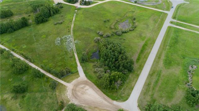 3 Big Hill Springs Cove, Rural Rocky View County, AB T4C 0E5 (#C4255304) :: The Cliff Stevenson Group