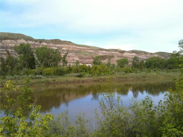 595 Riverside Drive E, Drumheller, AB T0J 0Y5 (#C4255596) :: Calgary Homefinders