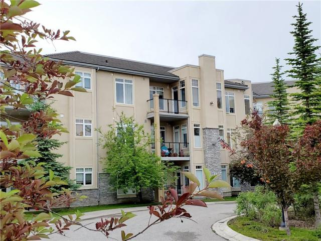 2121 98 Avenue SW #212, Calgary, AB T2V 4S6 (#C4256200) :: Redline Real Estate Group Inc