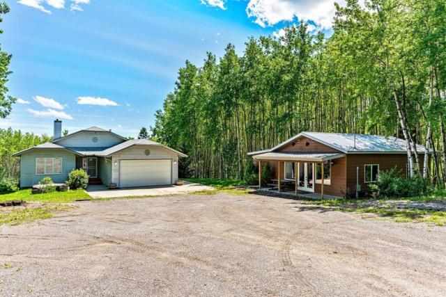 162006 272 Street W, Rural Foothills County, AB T0L 1W0 (#C4256384) :: Calgary Homefinders