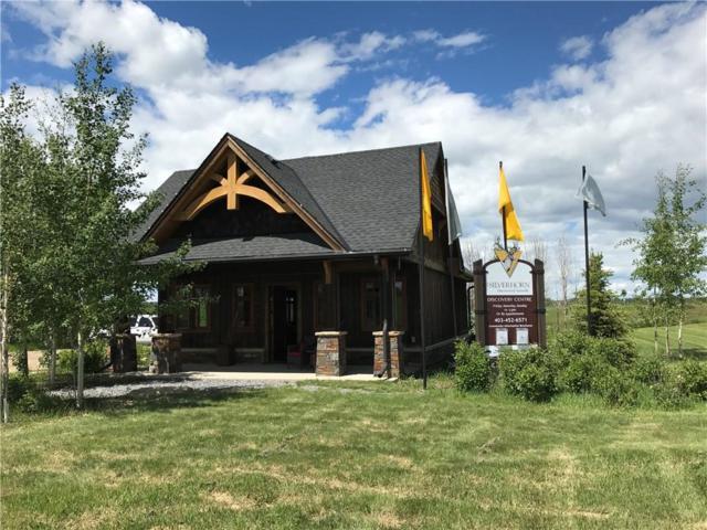 2 Silverhorn Park, Rural Rocky View County, AB T3R 0X3 (#C4256465) :: The Cliff Stevenson Group