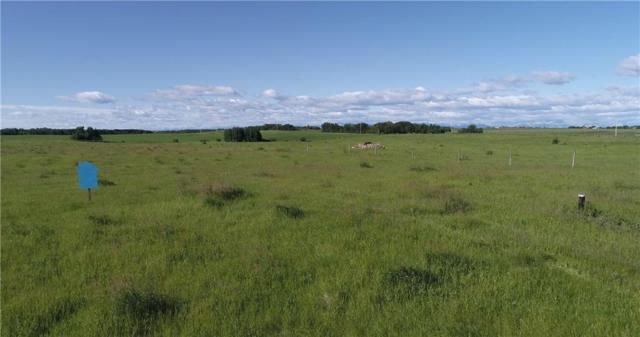 42223 Weedon Trail, Rural Rocky View County, AB T4C 0G9 (#C4256914) :: Calgary Homefinders