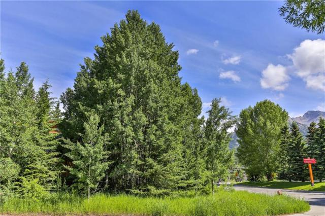 2 Pinewood, Canmore, AB T1W 1P8 (#C4257018) :: Calgary Homefinders