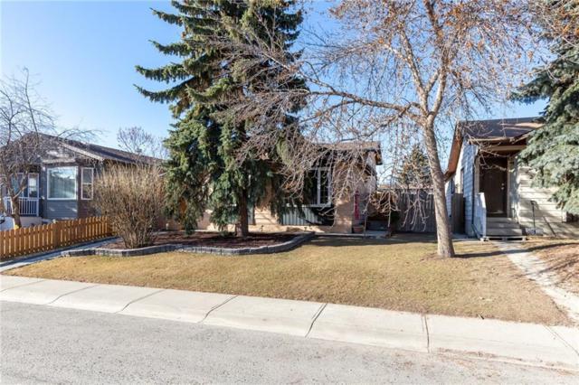 224 Erin Croft Crescent SE, Calgary, AB T2B 2V1 (#C4257073) :: Redline Real Estate Group Inc