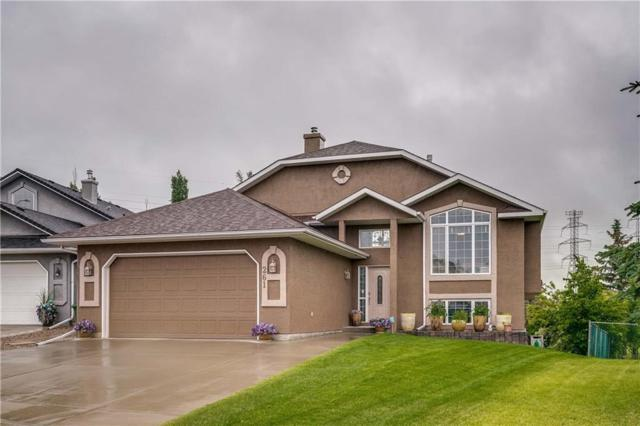 261 Lakeside Greens Crescent, Chestermere, AB T1X 1C3 (#C4257110) :: Redline Real Estate Group Inc
