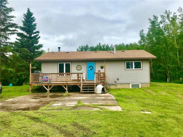 34472 RR35, Rural Red Deer County, AB T0M 1K0 (#C4257193) :: Redline Real Estate Group Inc
