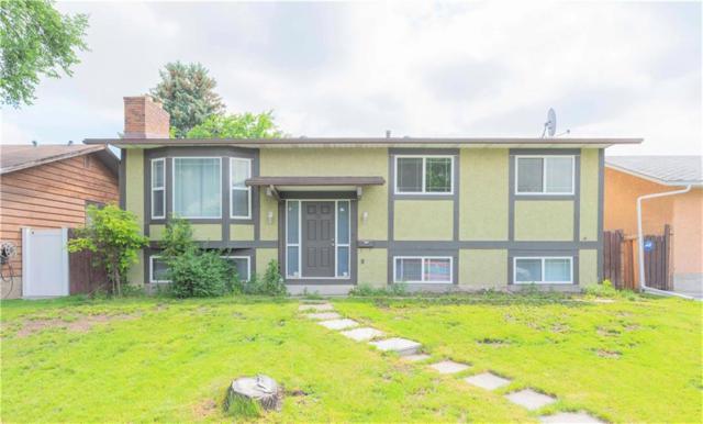 303 Temple Close NE, Calgary, AB T1Y 3C1 (#C4257333) :: Redline Real Estate Group Inc