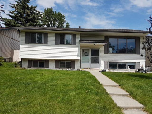 223 Maddock Way NE, Calgary, AB T2A 3X5 (#C4257365) :: Calgary Homefinders
