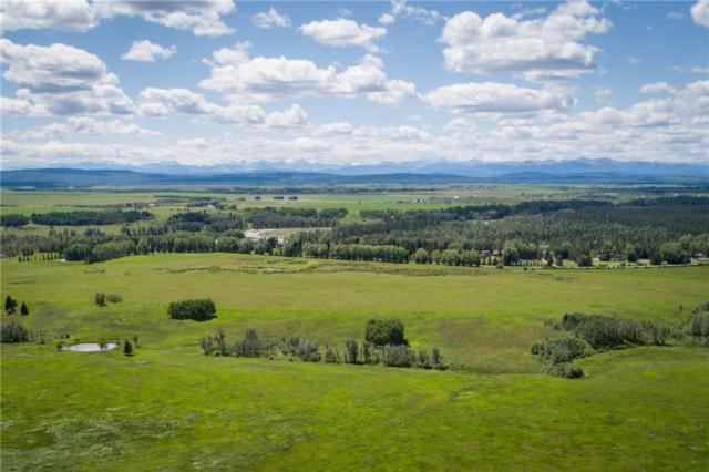 100 Grandview Way, Rural Rocky View County, AB T3Z 0A8 (#C4257445) :: The Cliff Stevenson Group