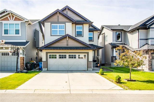 175 Skyview Shores Crescent NE, Calgary, AB T2C 0J9 (#C4257530) :: Redline Real Estate Group Inc