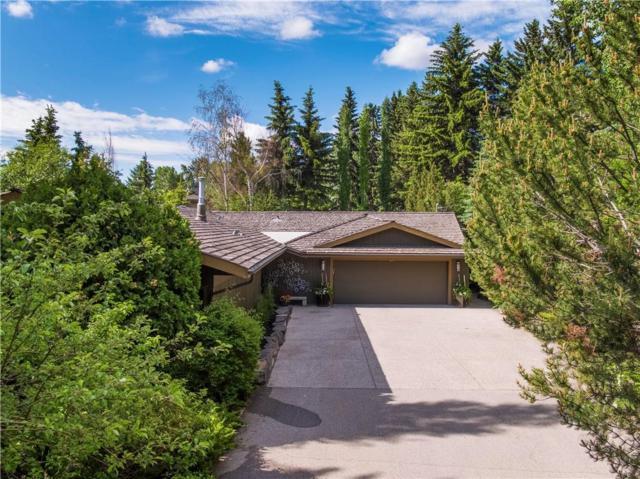9960 Patton Road SW, Calgary, AB T2V 5E8 (#C4257543) :: Calgary Homefinders