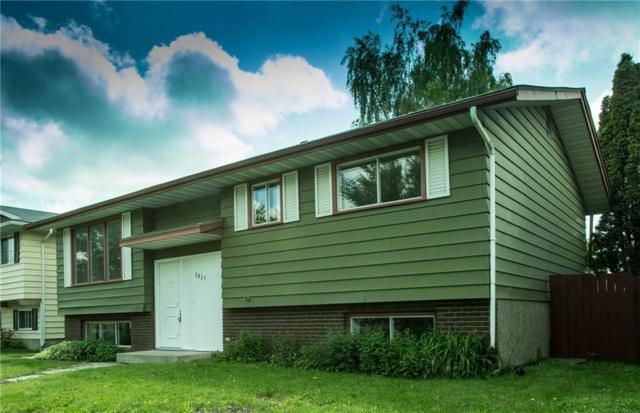 2827 Dover Ridge Drive SE, Calgary, AB T2B 2L2 (#C4257663) :: Redline Real Estate Group Inc