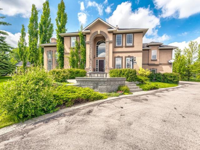 11 Alexa Close, Rural Rocky View County, AB T3R 1B9 (#C4257751) :: Redline Real Estate Group Inc