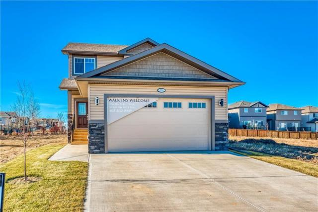 156 Wildrose Crescent, Strathmore, AB T1P 0H1 (#C4258062) :: The Cliff Stevenson Group