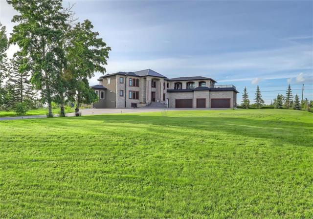 35 Mckendrick Run, Rural Rocky View County, AB T3Z 3K1 (#C4258236) :: Redline Real Estate Group Inc