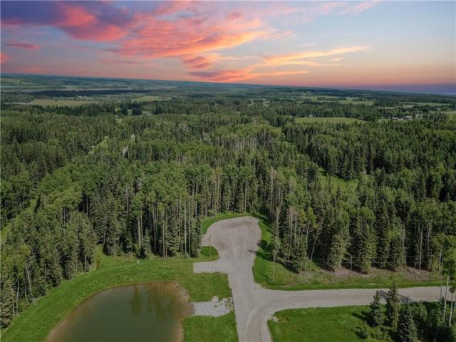 Lot #3 32529 Range Road #52, Rural Mountain View County, AB T0M 1X0 (#C4258270) :: Redline Real Estate Group Inc