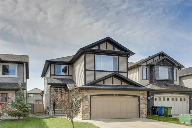 363 New Brighton Place SE, Calgary, AB T2Z 4W6 (#C4258348) :: Redline Real Estate Group Inc