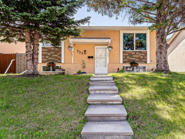 731 Malvern Drive NE, Calgary, AB T2A 5P9 (#C4259020) :: Calgary Homefinders