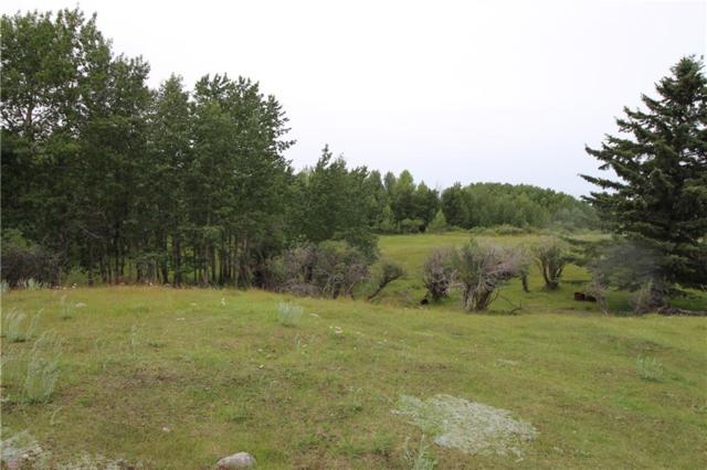NULL Null, Rural Rocky View County, AB T3R 1A6 (#C4259125) :: Redline Real Estate Group Inc