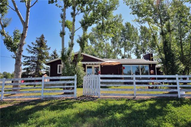 118016 376 Avenue E, Rural Foothills County, AB T1V 1N3 (#C4259639) :: Virtu Real Estate