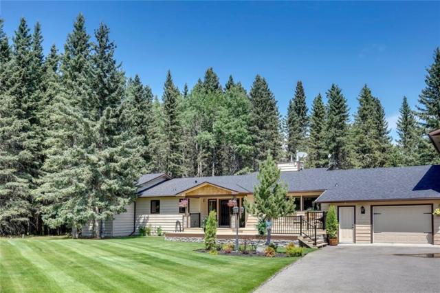 44 Mountain Lion Drive, Bragg Creek, AB T0L 0K0 (#C4259669) :: Redline Real Estate Group Inc