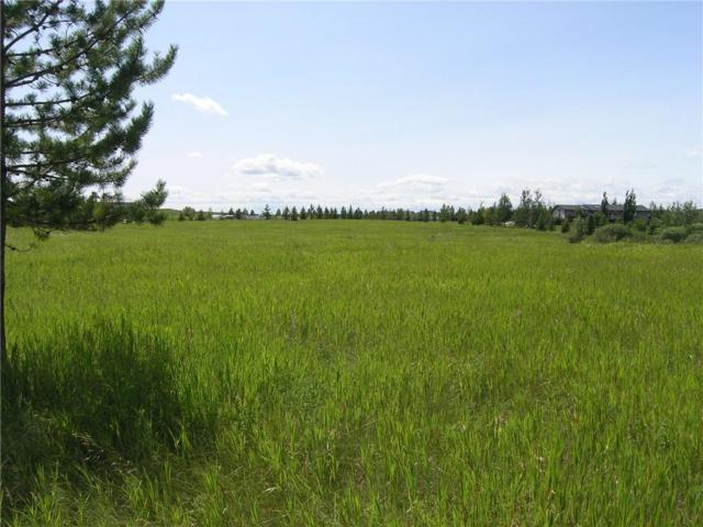 81230 2378 Drive E, Rural Foothills County, AB T1S 1B4 (#C4259805) :: Redline Real Estate Group Inc