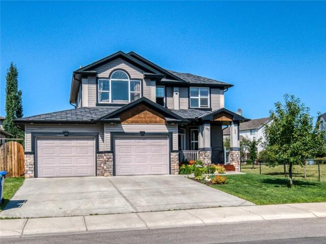 192 West Creek Boulevard, Chestermere, AB T1X 1P5 (#C4261056) :: Virtu Real Estate