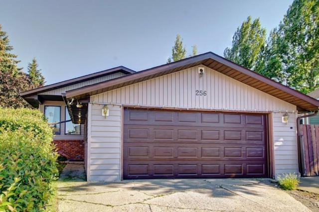 256 Big Springs Court SE, Airdrie, AB T4A 1K8 (#C4261217) :: Virtu Real Estate