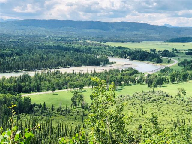 73072A Township Road 31-4A, Rural Clearwater County, AB T0M 1X0 (#C4262271) :: The Cliff Stevenson Group